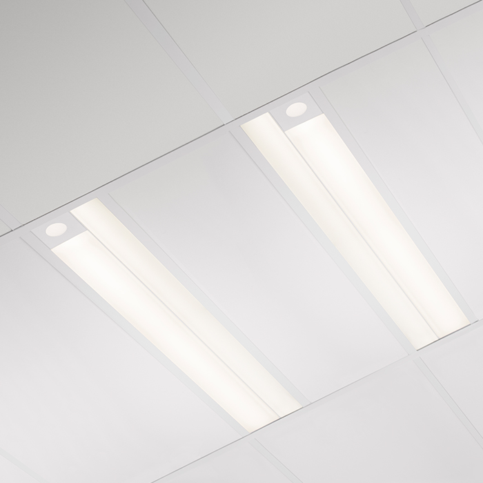 Rize Recessed